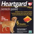 ハートガードプラス大型犬用 22〜45kg商品画像