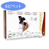 ストロングホールド60mg 小型犬用 5.1kg〜10kg の画像