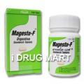 マジェストF商品画像